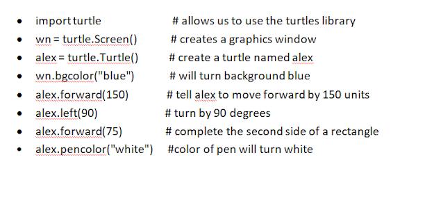 Python Turtle Example