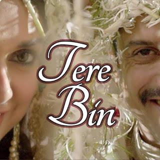 Tere Bin Lyrics-Wazir