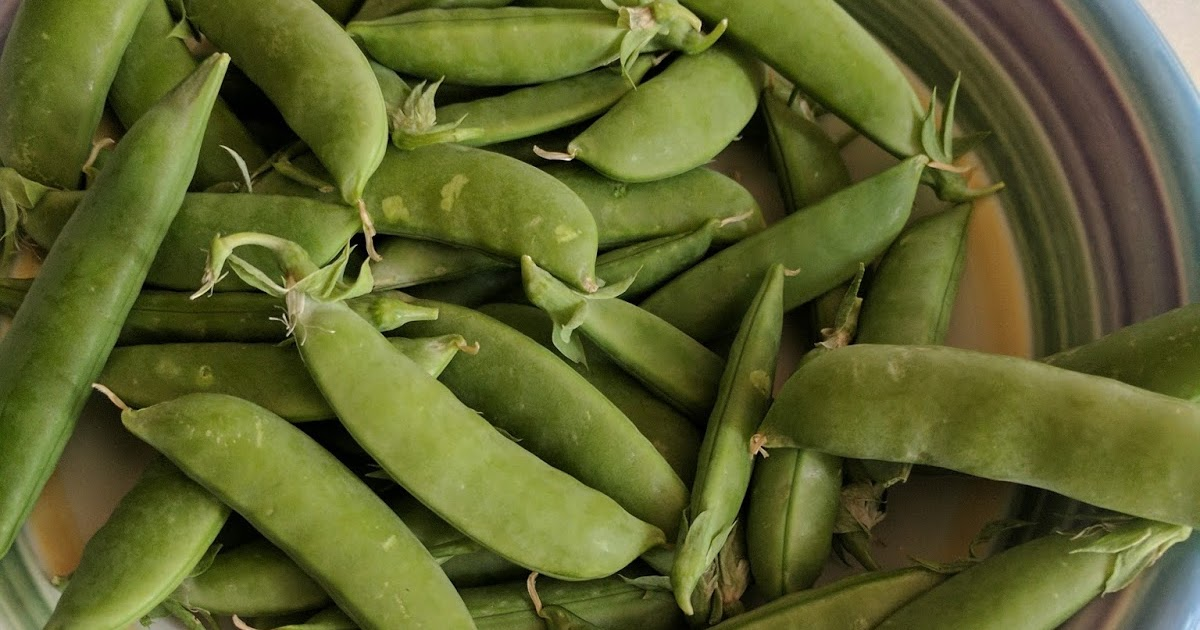Canarella - Once Upon a Jam: Quick Pickled Sugar Snap Pea's