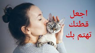 يعتقد العلماء أنهم قد وجدوا طريقة ذكية لجعل قطتك تهتم بك