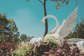 Spot Foto Patung Angsa Taman Langit Gunung Banyak