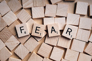 Kissel Hypnosis can help you deal with phobias and fears through hypnosis in Arizona and Michigan.