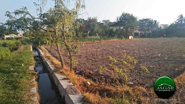 Tanah Sawah Dijual jalan Kaliurang Km 12