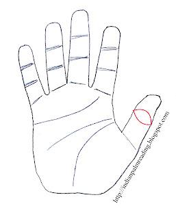 Yav Sign On The Thumb (Phoenix Eye) Palmistry