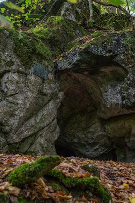 Westerwaldsteig Etappe 1 | Von Herborn nach Breitscheid | Tierpark Herborn | Herbstlabyrinth Erdbach 20