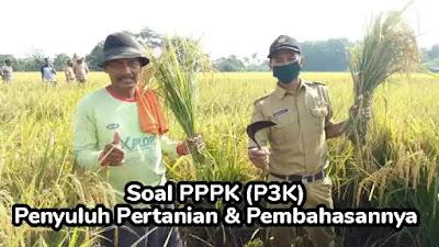 Soal PPPK (P3K) Penyuluh Pertanian dan Pembahasan