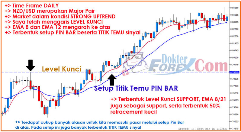 Pin Bar PRICE BREAK Trading