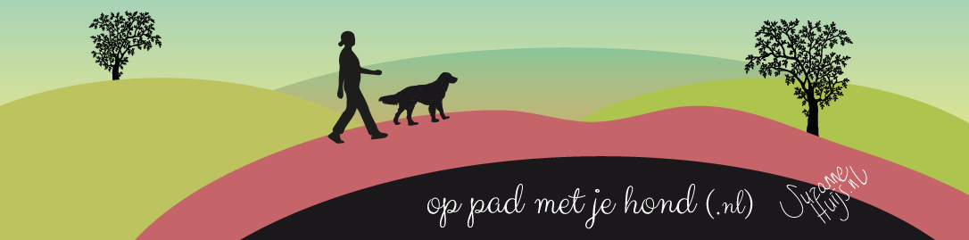 Op pad met je hond | trainingsbegeleiding en wandelservice