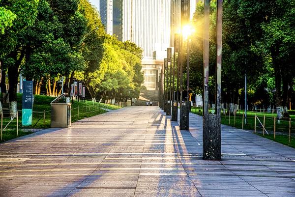 Los árboles en las ciudades como infraestructura de salud pública