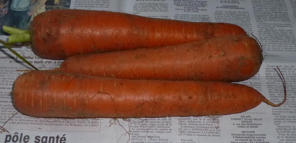 je m 39 clate avec mes 10 doigts comment conserver les carottes. Black Bedroom Furniture Sets. Home Design Ideas