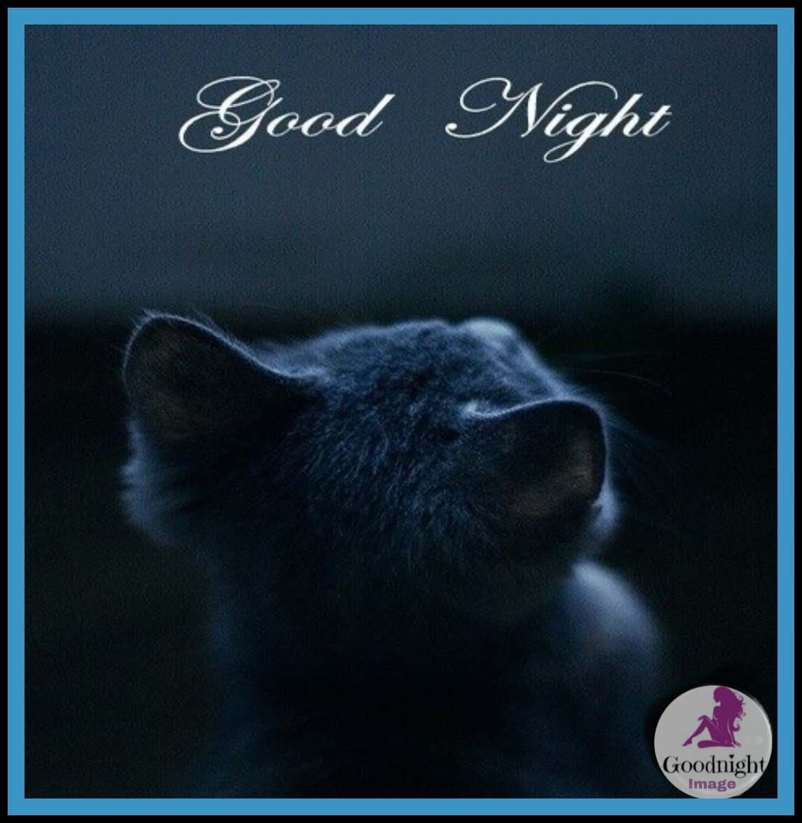 Good Night%2BImage 18
