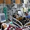 www.seuguara.com.br/Pandemia/coronavírus/colapso na saúde/