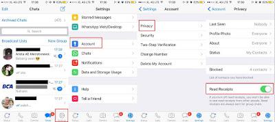 Cara Menghilangkan Centang Biru Di Whatsapp Iphone
