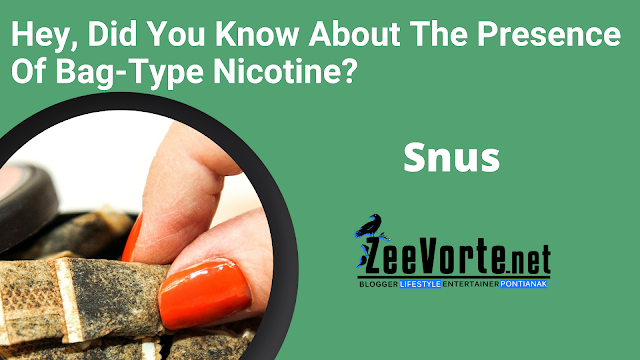 Hey, Did You Know About The Presence Of Bag-Type Nicotine?