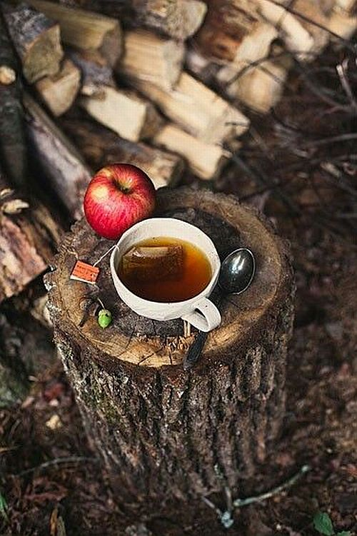 have a cup of fall tea with an apple