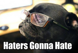haters gonna hate pug meme