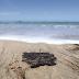 Ações para medir efeito de óleo em praias do Ceará não saíram do papel