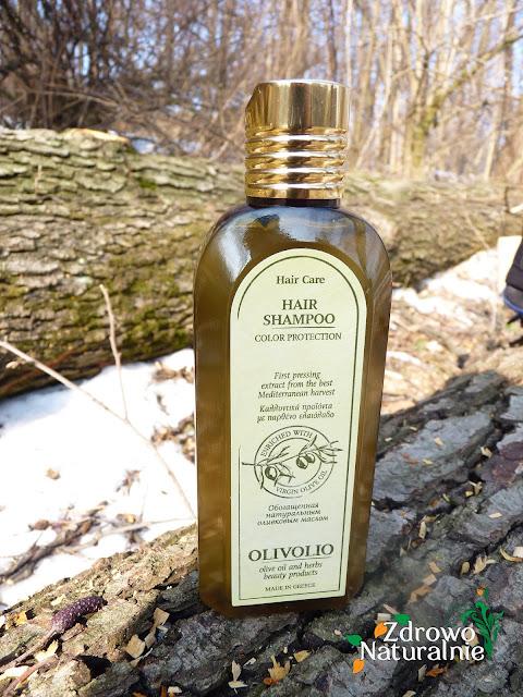 Olivolio - Szampon do włosów farbowanych z proteinami i aminkokwasami
