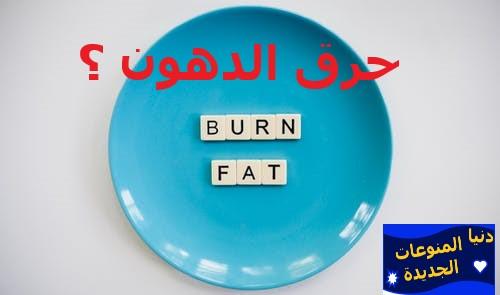 حرق الدهون طوال اليوم | علاقة الأنسولين ومقاومة الأنسولين بالتخسيس وانقاص الوزن