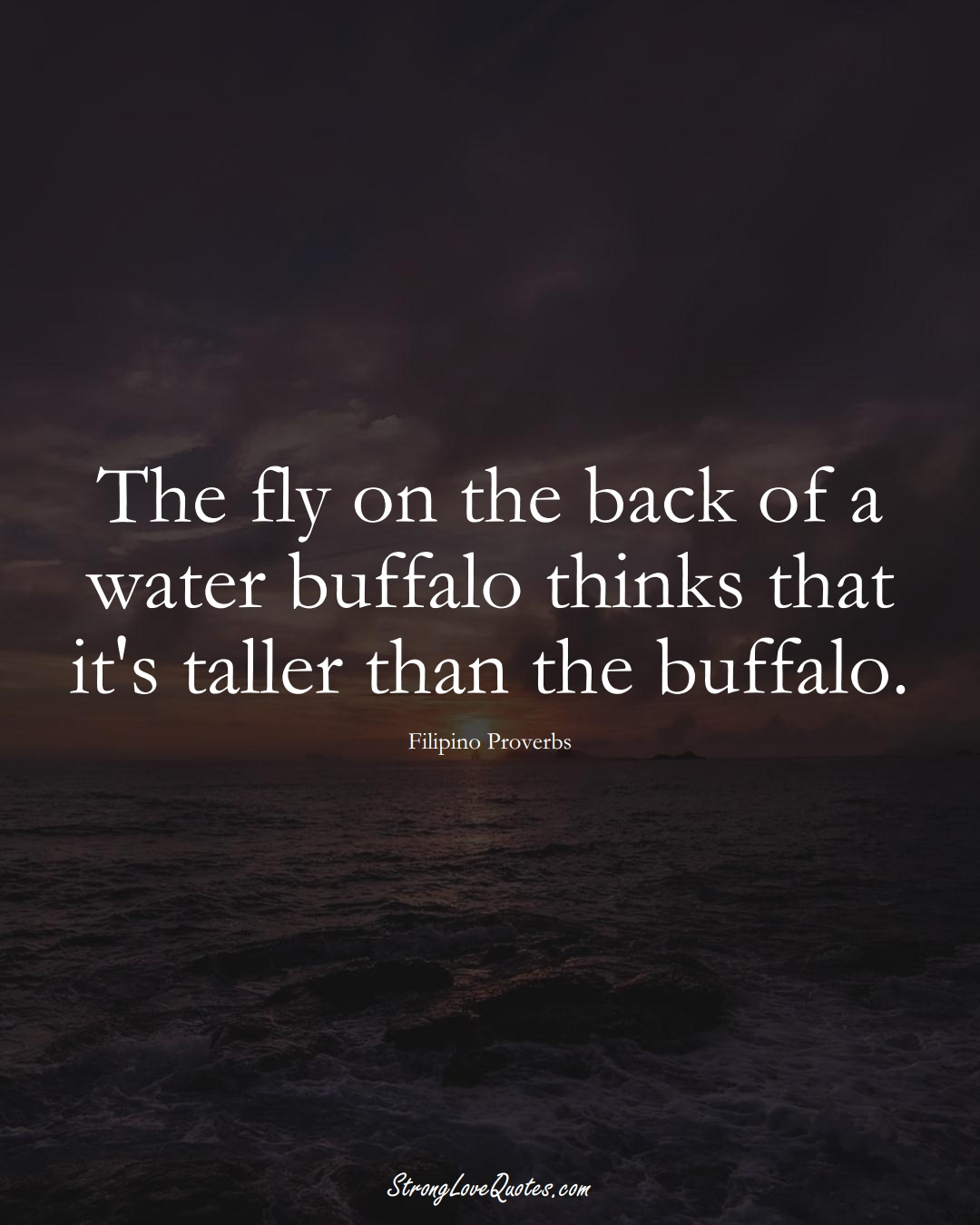 The fly on the back of a water buffalo thinks that it's taller than the buffalo. (Filipino Sayings);  #AsianSayings
