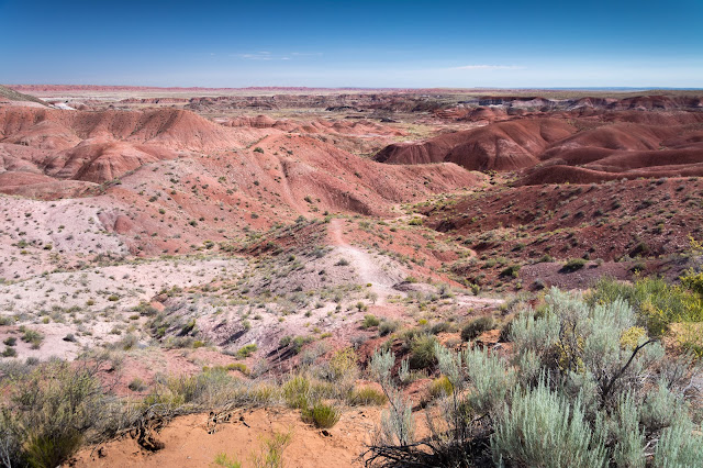 Tiponi Point, Petrified Forest National Park