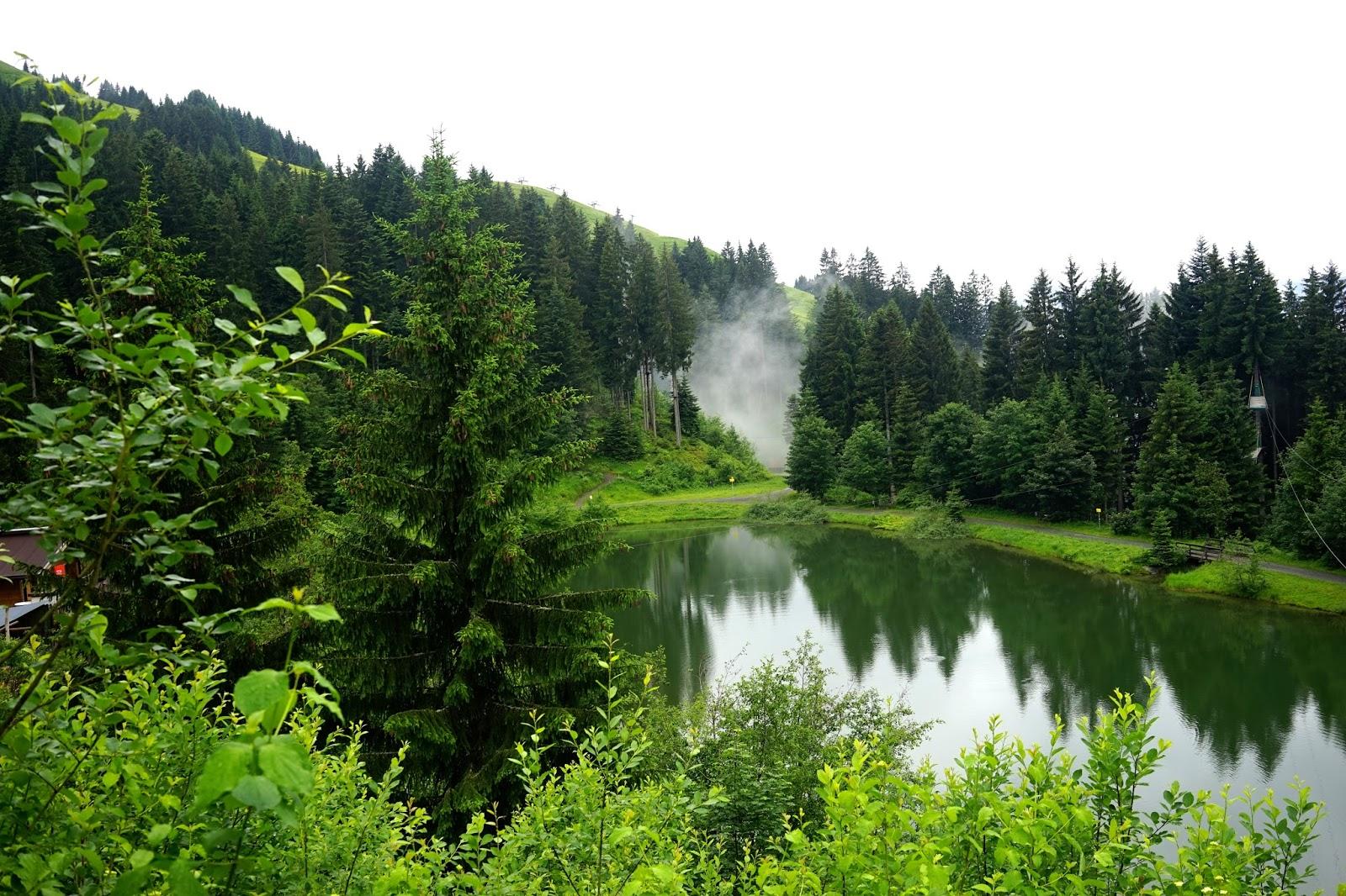 Horn Park austria