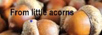 From Little Acorns