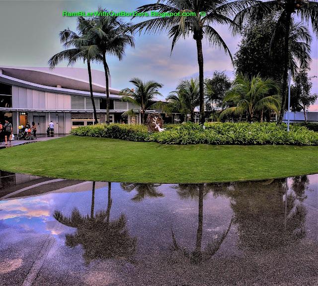 Palm trees, rooftop, Vivocity, Singapore