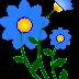 Clip art : Hoa cúc xanh