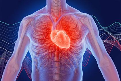 Apa penyebab palpitasi jantung?