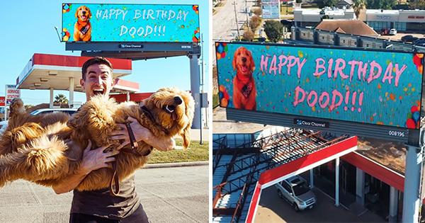 🔥 Hombre alquila valla publicitaria en el cumpleaños de su Perro