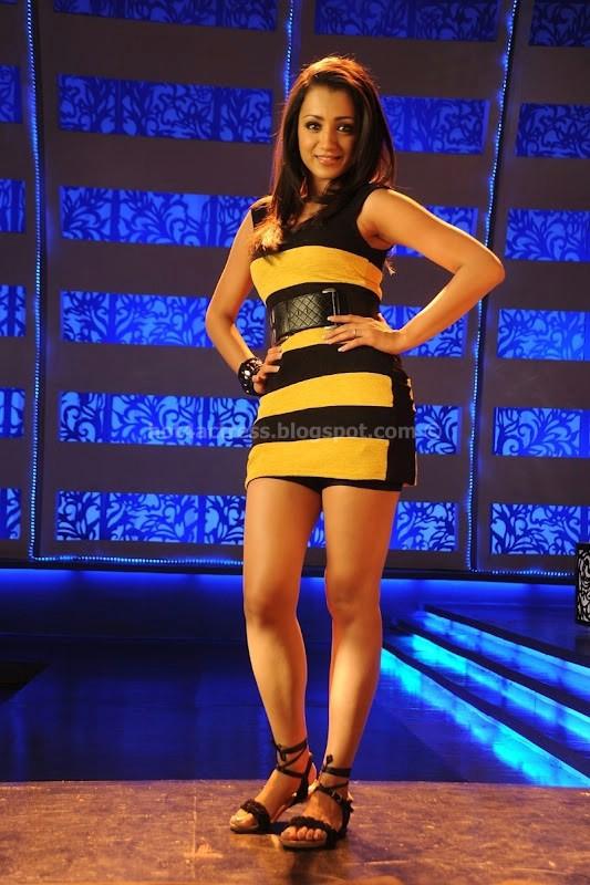 Trisha hot photo gallery in dammu