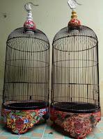 Sangkar Burung Lovebird ELITE