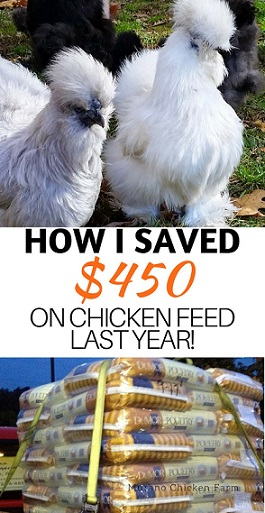 Cut your chicken feed bill in half!