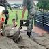Umabot na sa 242 Maute Member ang napatay ng Militar sa sagupaan sa Marawi City