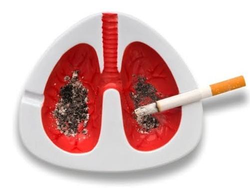 Clever Ashtray Smoking