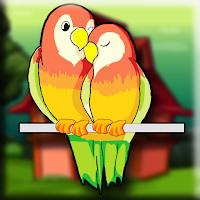 Play Games2Jolly Lutino Bird E…