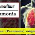 நிமோனியா (Pneumonia) என்றால் என்ன?