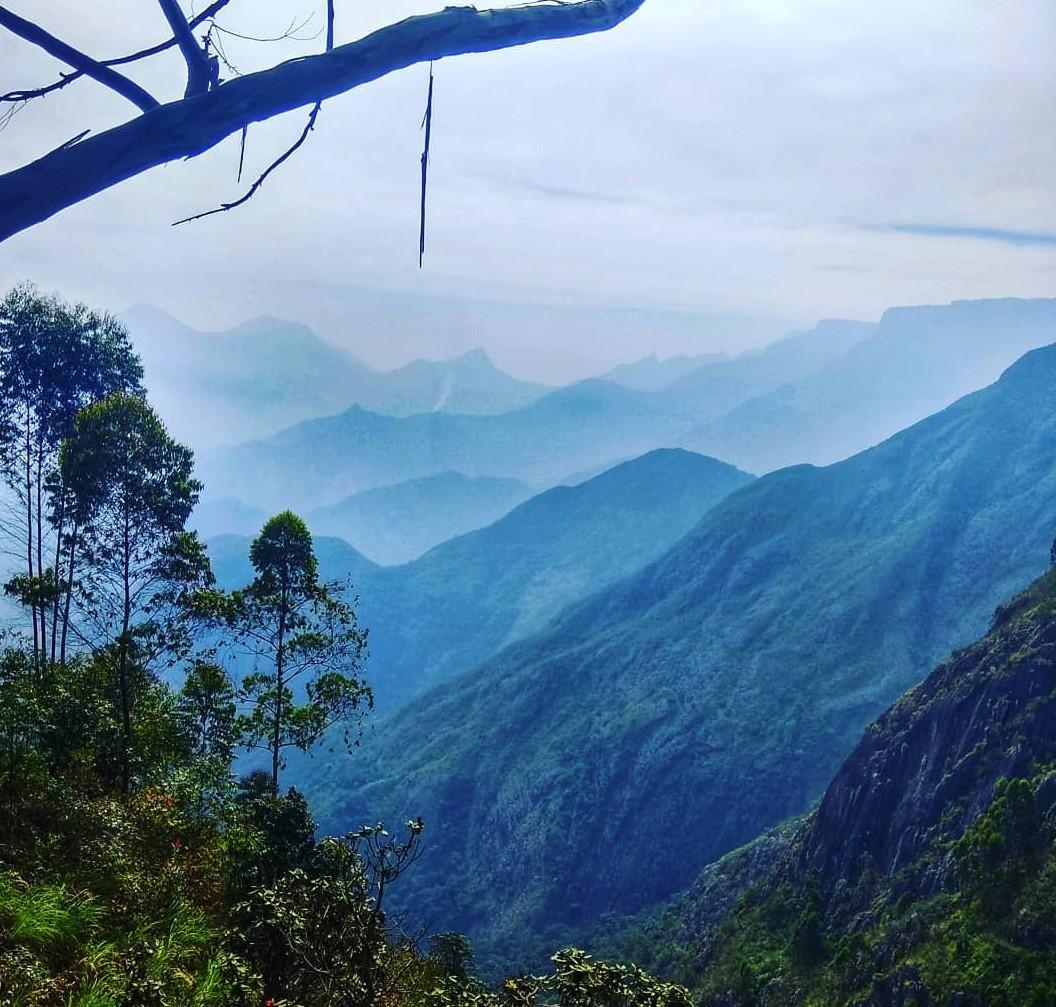 11 BEST Places to Visit in Kodaikanal