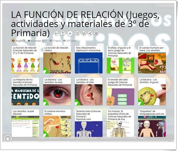"""""""17 Juegos, actividades y materiales para el estudio de LA FUNCIÓN DE RELACIÓN en 3º de Primaria"""""""