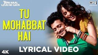 Tu Mohabbat Hai lyrics - Atif Aslam, Monali Thakur and Priya Saraiya -Tere Naal Love Ho Gaya