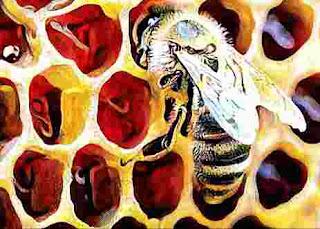 Khasiat Lebah untuk Pengobatan IV: Propolis