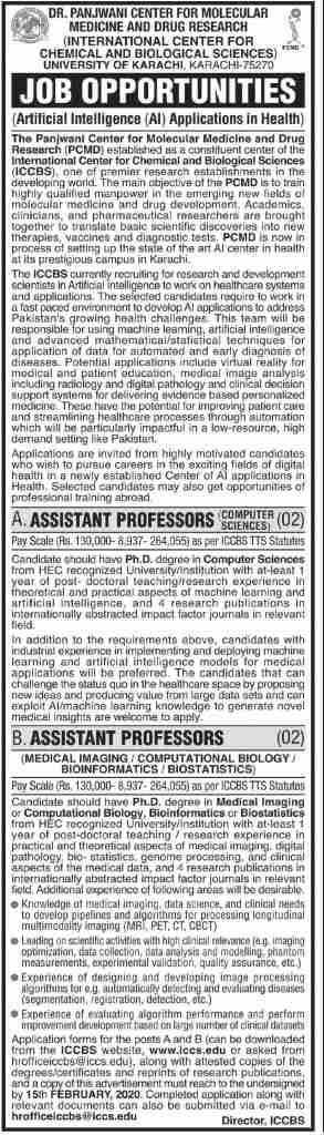 Panjwani Center Jobs