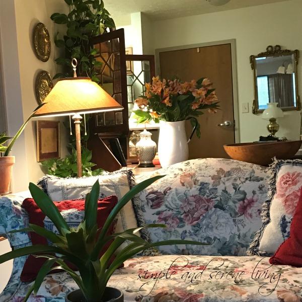 winter home cottage houseplants cut flowers
