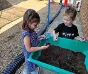 vermicomposting bin method, organic fertilizer production