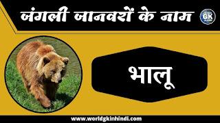 Bear animal name in hindi