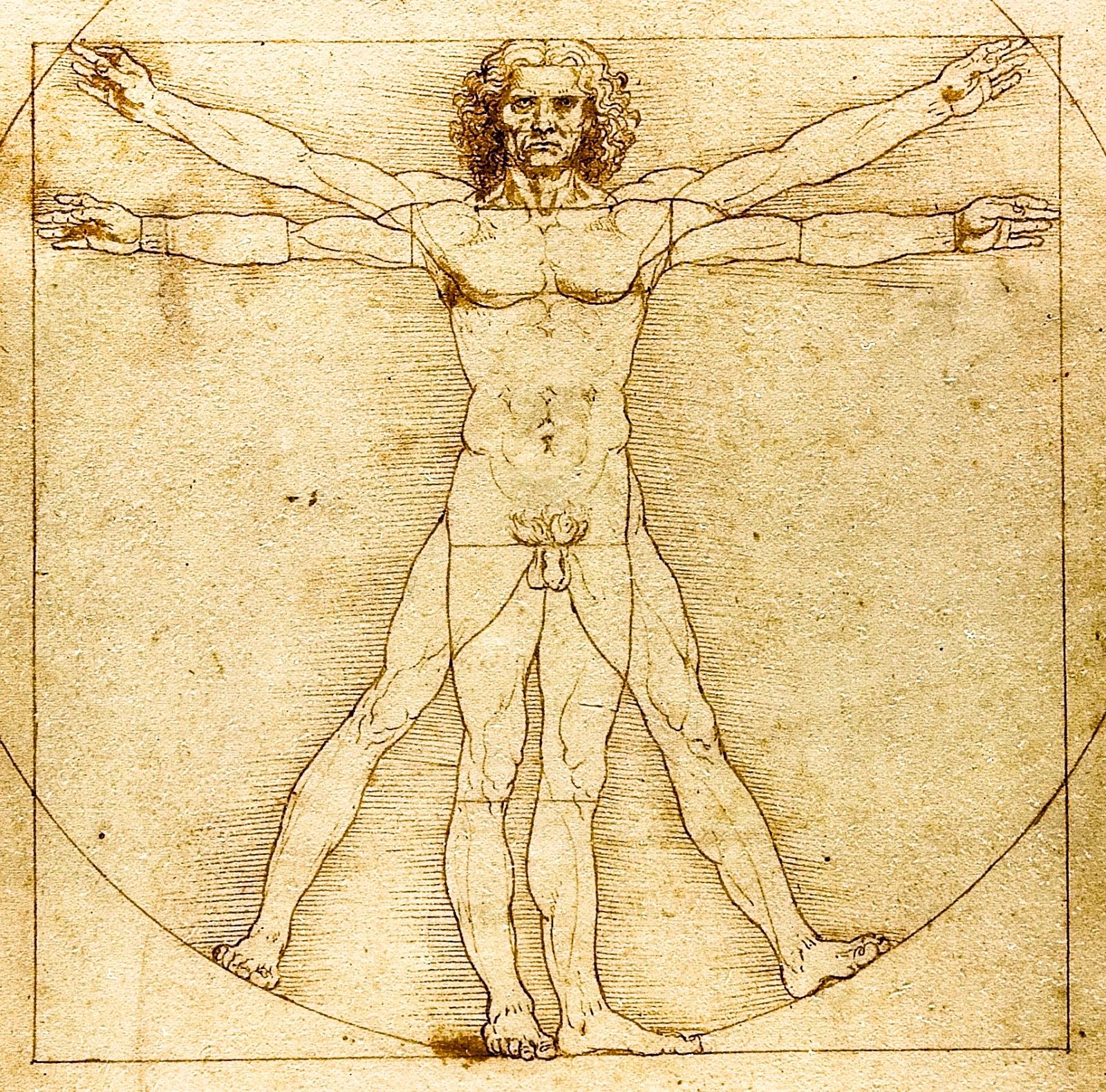 Anatomie și curiozități despre corpul uman
