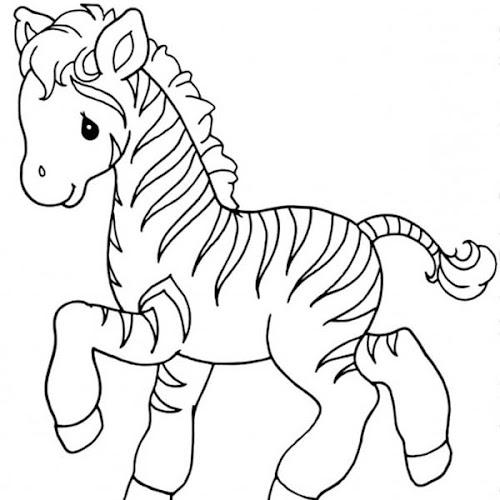 desenhos de zebra moldes de zebra espaÇo educar desenhos pintar