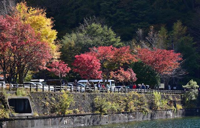 中禅寺湖湖畔の紅葉