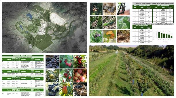 Regenerative Landscape Design - Online Interactive Course